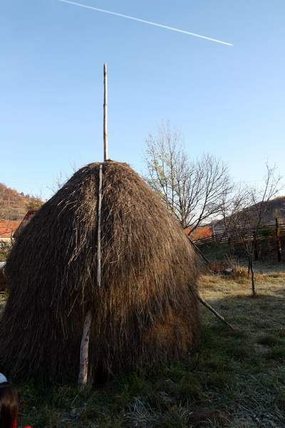 Berag-Valea_Draganului-20.jpg