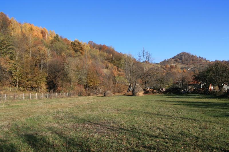 Berag-Valea_Draganului-3.jpg